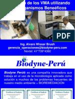Biodyne - Alvaro Wissar