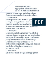 Plastida Adalah Organel Yang Mengandung Pigmen