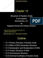 Structure of Nucleic Acids 12