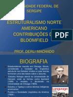 Estruturalismo NA Contribuições de Bloomfeild