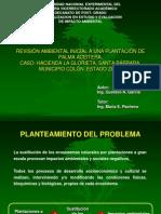 Revision Ambiental Inicial (Plantacion de Palma Aceitera)