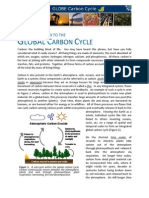 CarbonCycleBackground.pdf