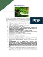 Propiedades Medicinales de La ALBAHACA