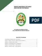 Diplomado Derecho Penal Contenidos