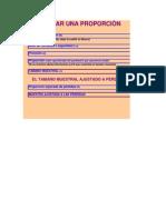 tamano_muestral (1).xls