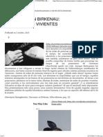 Una Mujer en Birkenau_ Documentos Vivientes _ El Viento en La Noche