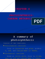 Chapter 6- Photosynthesis Carbon Metabolism (1)