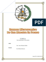 Informe Microbiologia - Laboratorio 2