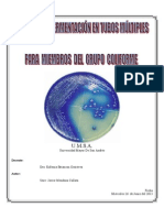 Informe Microbiologia - Laboratorio 7