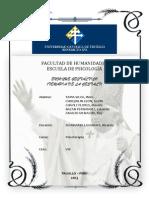 El Enfoque Gestaltico (Informe)