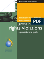 Right to Remedy and Reparations for Gross Human Rights Violations, Practitioners Guide 2006