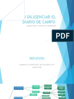 Criterios de Diarios de Campo