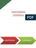 Aneurisma Cerebral (1) Elisa y Cata