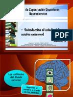 Apunte A - Introducción al conocimiento del cerebro emocional