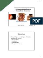 10.- fisiopatologia do sistema reprodutor masculino.pdf