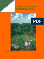 Criterios Proteccion Sistema 2005 V2