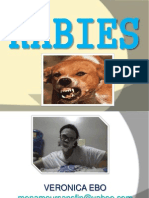 rabies-ppt