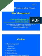 Wp13 Risk Management