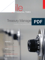 Agile Financial Times August 2009 Edition