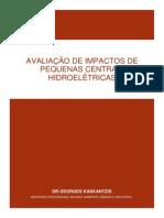 IMPACTO DE PEQUENAS CENTRAIS HIDROELÉTRICAS