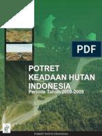 Potret Keadaan Hutan Indonesia
