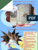 prezentare_proiect_ginaV
