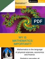 Why Do Mathematics