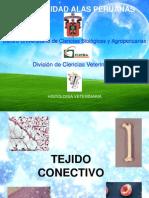 tejido-conectivo-1234312910901478-1