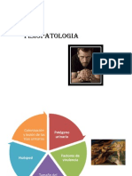 56268605-FISIOPATOLOGIA-pielonefritis