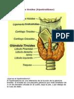 Problemas Con La Tiroides