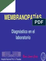 3Fisiologia_membrana_Crisp     hemolíticas