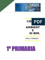 Cienc y Ambt III Bim