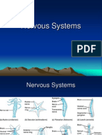 Nervous & Other Systems