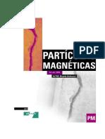 END Partícula  Magnética