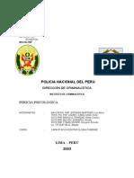 Daño Psíquico Lima 2003