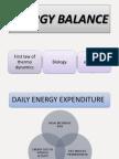 Energy Balance Ppt