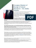 Georgian Minister of Energy