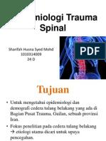 Epid Spinal Inj (1)