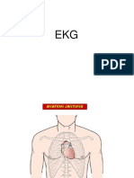 Ekg dr. Anita, Sp.PD