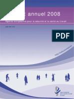 AR Summary 2008FR