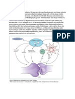 Patogenesis.docx