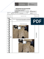 Registro de Prospeccion Puno 1-25