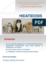 CAPACITACION HIDATIDOSIS COLEGIOS
