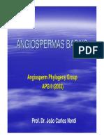 ANGIOSPERMAS+BASAIS