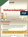 Determinantes Pp t