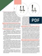 Factsheet01 Cap and Trade Es