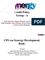 Credit Policy Guidelines