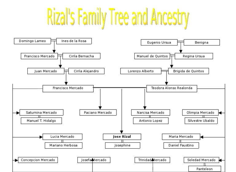 family tree of jose rizal I am looking for the family tree if dr jose p rizal from his ancestors to his descendantsi need a reply asaptnx a lot.
