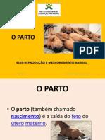 10 Parto
