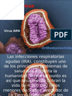 Influenza A Norteamerica/????/09 (H1N1) Ortomixovirus
